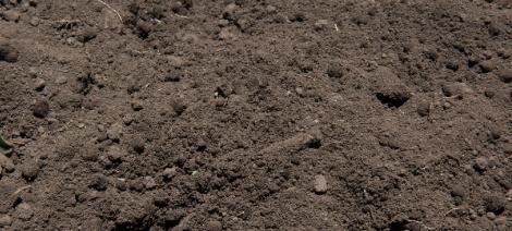 Soil/土